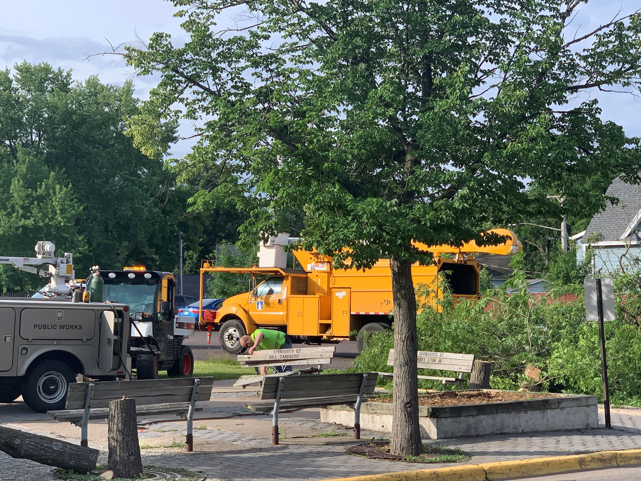 uptown commons tree removal